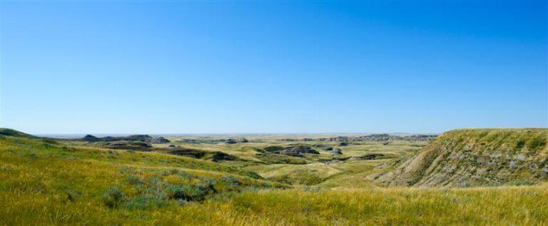 Ein Meer aus Gras: Prärie in Saskatchewan (c) Birgit-Cathrin Duval