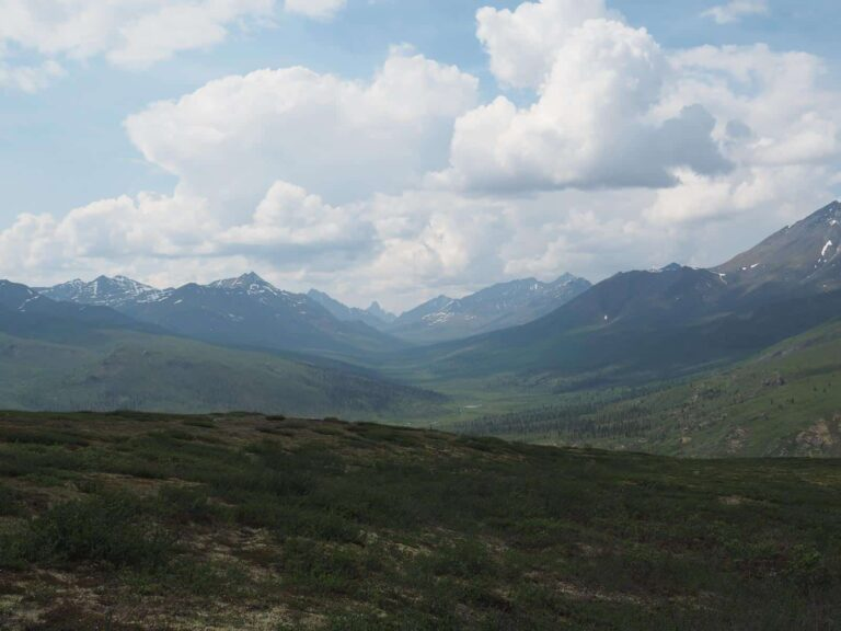 Dempster Highway - Tombstone Territorial Park - Foto Tobias Barth