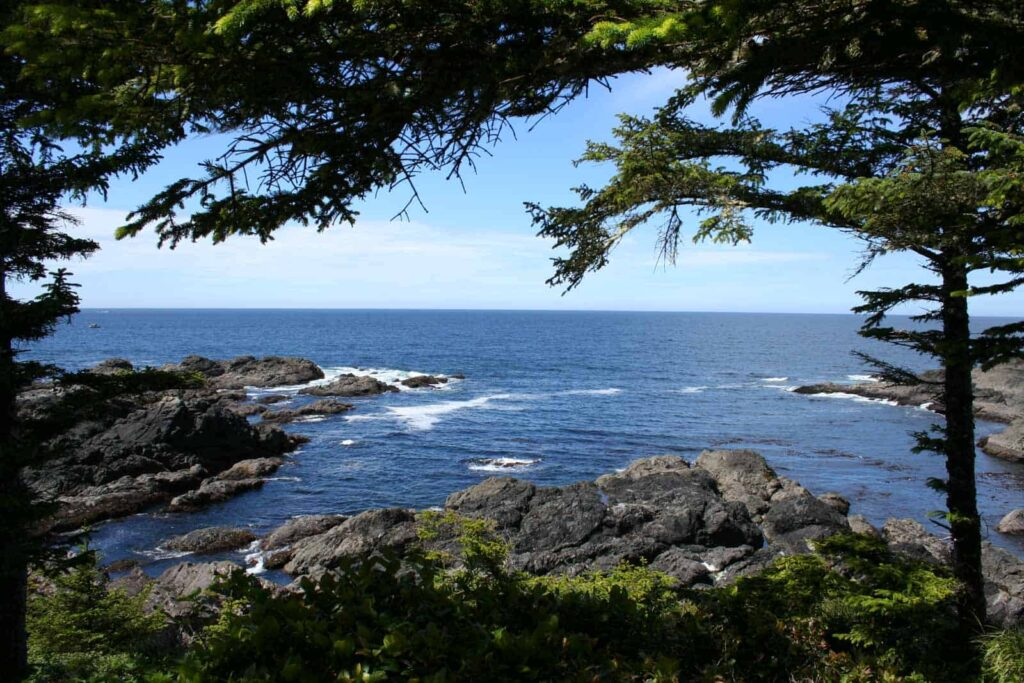 Wild Pacific Trail in Ucluelet - Foto Tobias Barth