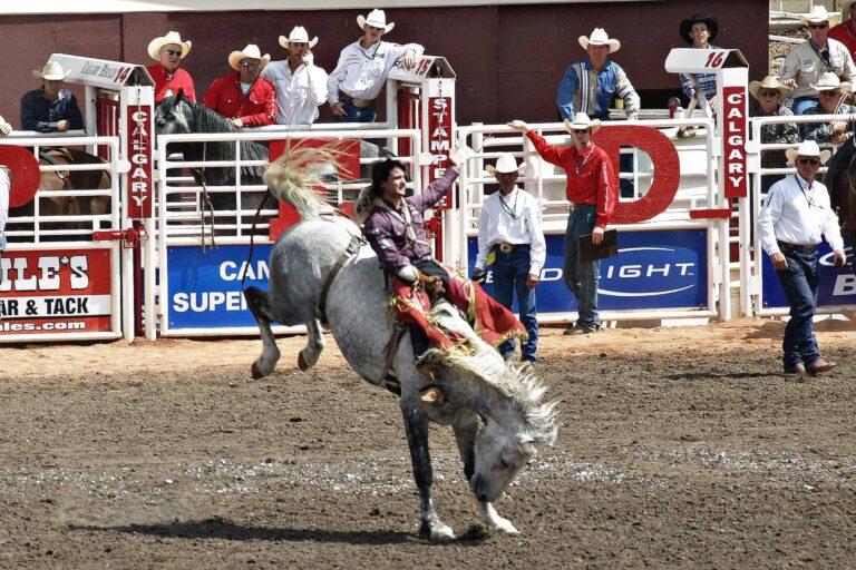 Calgary Stampede - größtes Rodeo der Welt