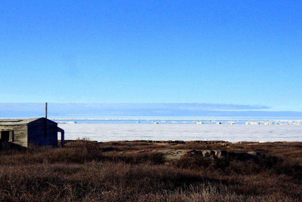 Anfang Juni bricht das Eis von Hudson Bay und Churchill River langsam auf (Claudia Grill)