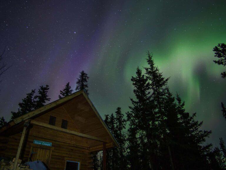 Aurora Borealis, Nordlichter, Blue Creek Cabin, Yukon - Fotograf Tobias Barth