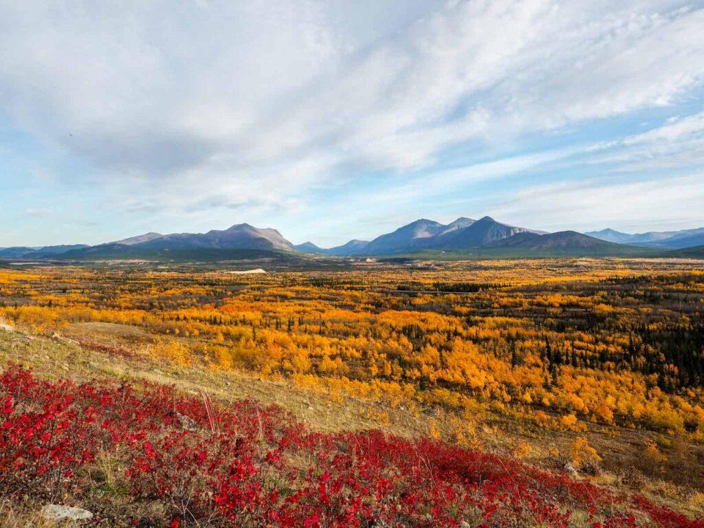Kanada hat 10% des weltweiten Waldbestandes, besonders schön anzusehen im Herbst