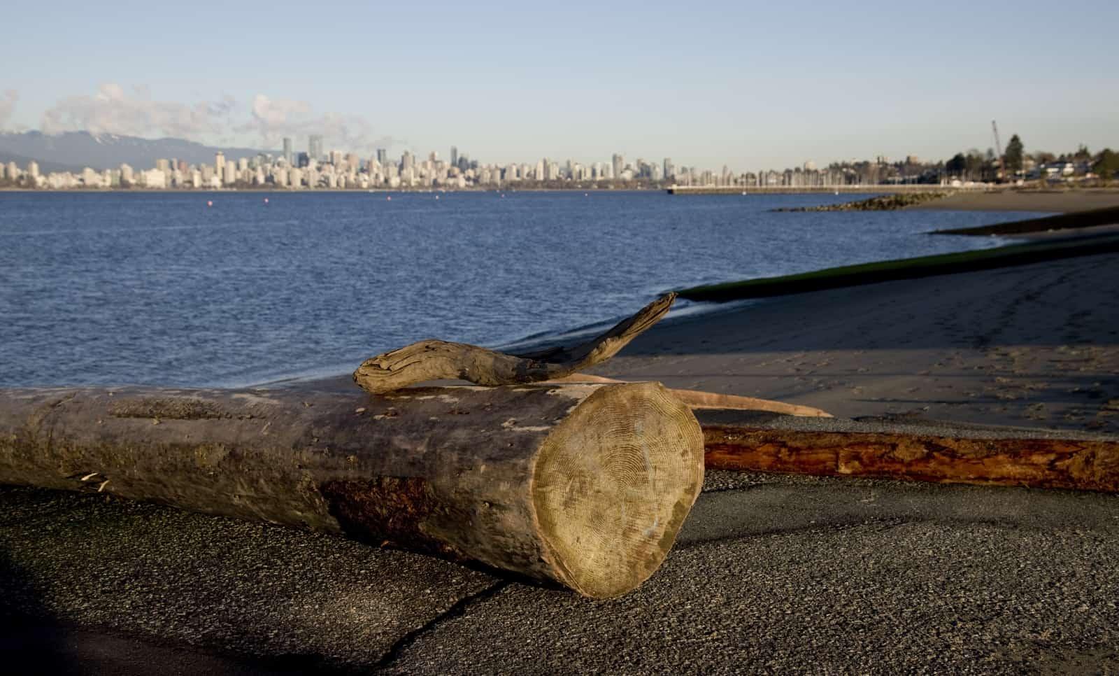 Spanish Banks vor der Skyline von Vancouver Foto photoguy66