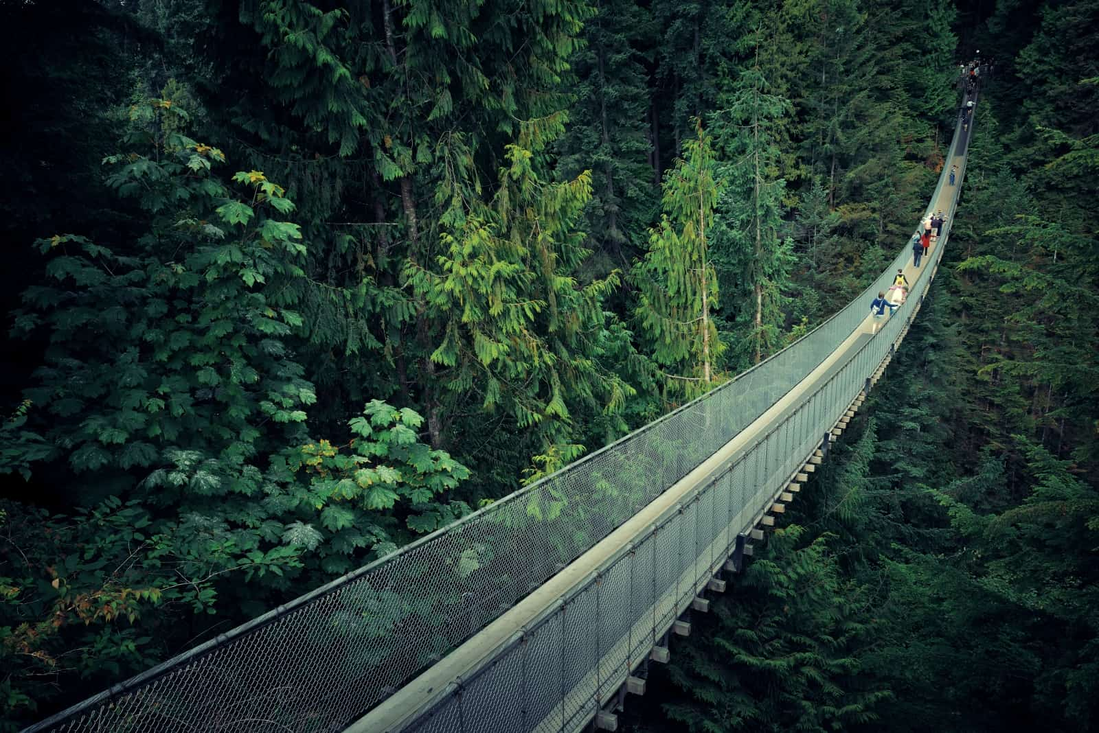 Capilano Suspension Bridge in Vancouver Foto Songquan Deng