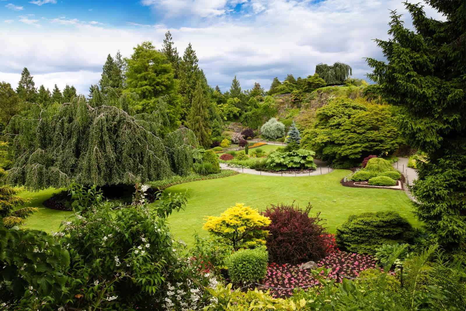 Queen Elisabeth Park Vancouver Foto ronniechua