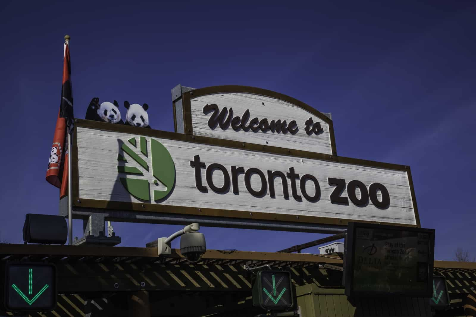 Toronto Zoo. Foto JHVEPhoto