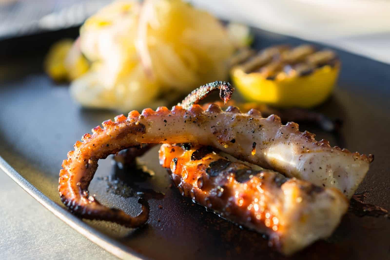 Gegrillter Octopus mit im Saft einer Zitrone mariniertem Fenchel. Foto