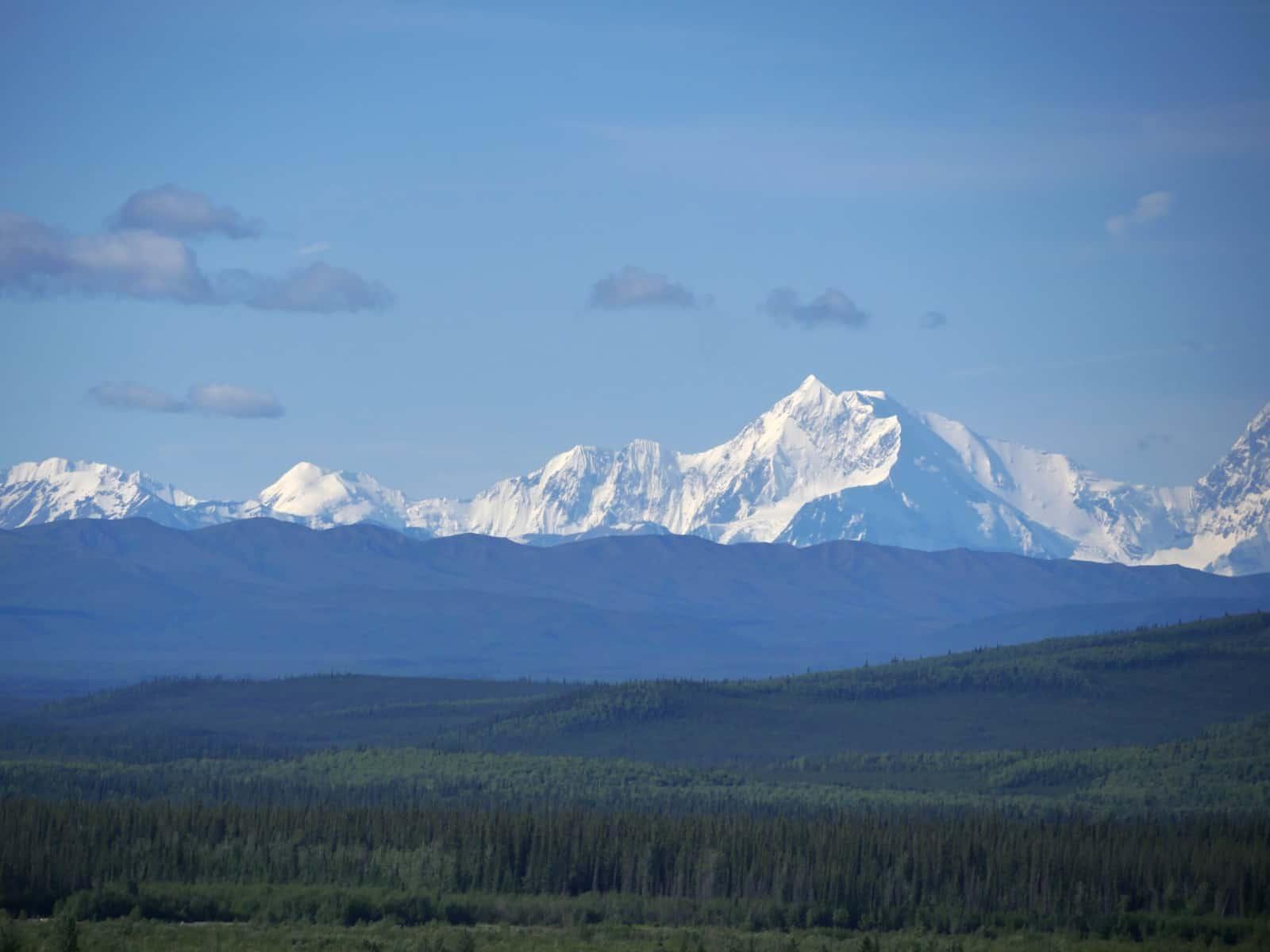 Blick auf die Alaska Range, in deren Zentralmassiv der Denali, der höchste Berg Nordamerikas steht. Leider hat er sich auf unserer Reise nicht gezeigt. Foto FasziKa
