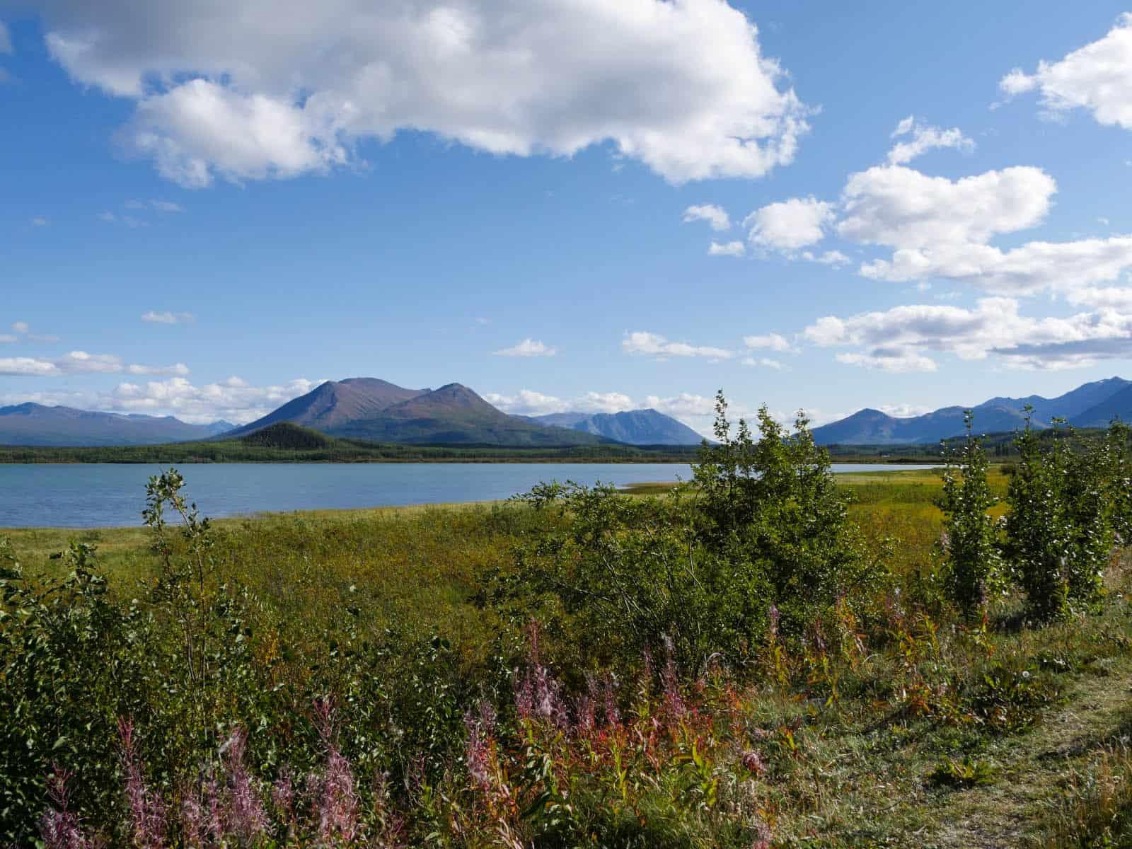 Warm kann er sein, aber auch stürmisch, der Dezadeash Lake, ein fischreiches Gewässer nahe Haines Junction. Foto Faszination Kanada