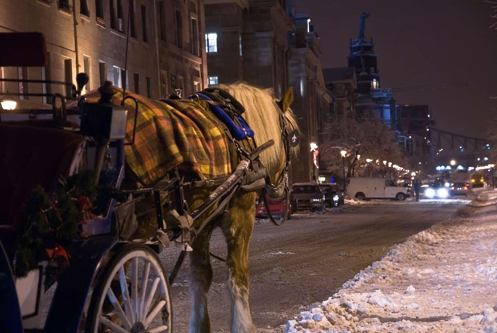 Rue De la Commune, Old Montreal. Foto Tourisme Montréal/Diane Charron