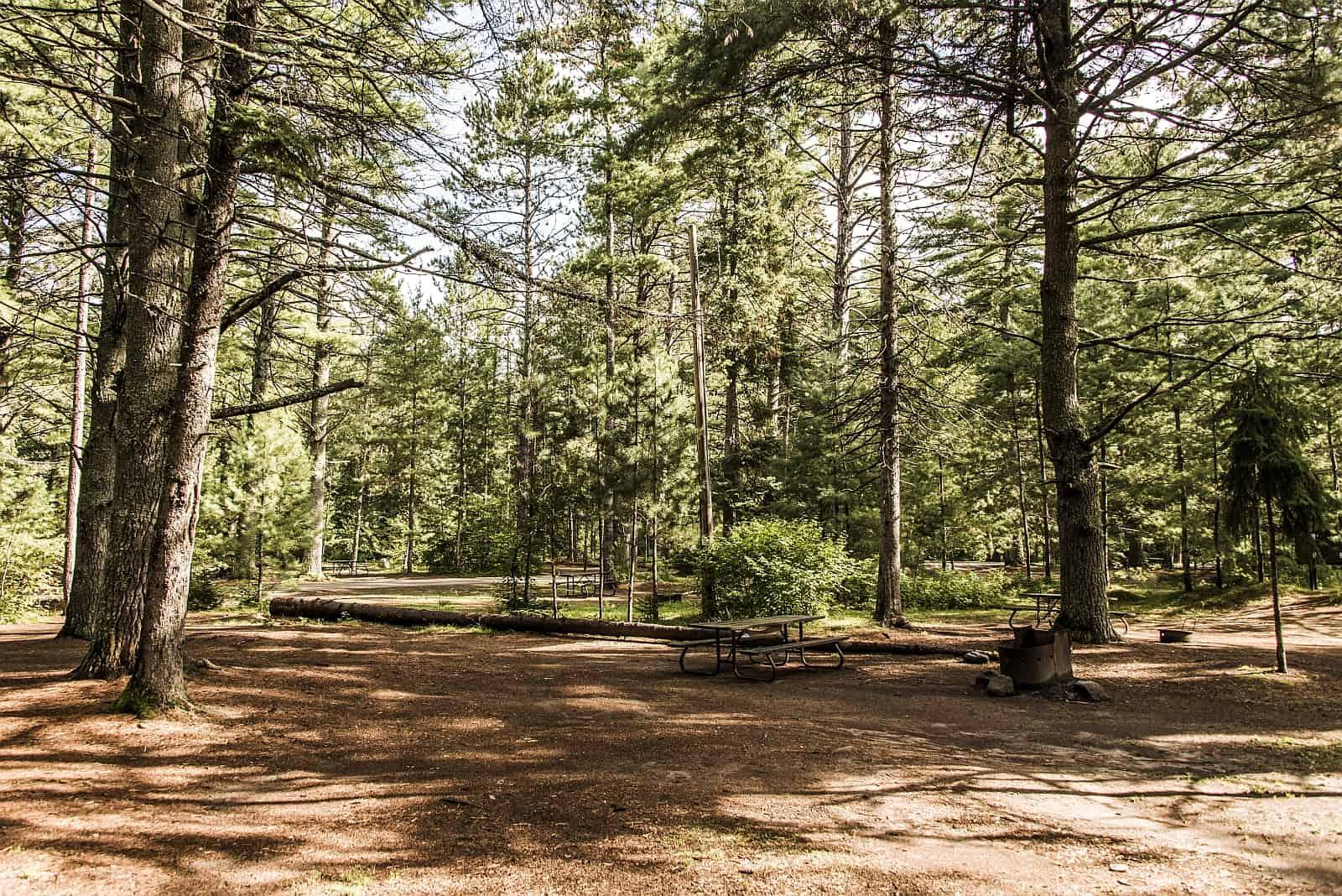 Ein typischer, weitläufiger Campground in einem Provincial Park mit Sitzgelegenheit und Feuerstelle.