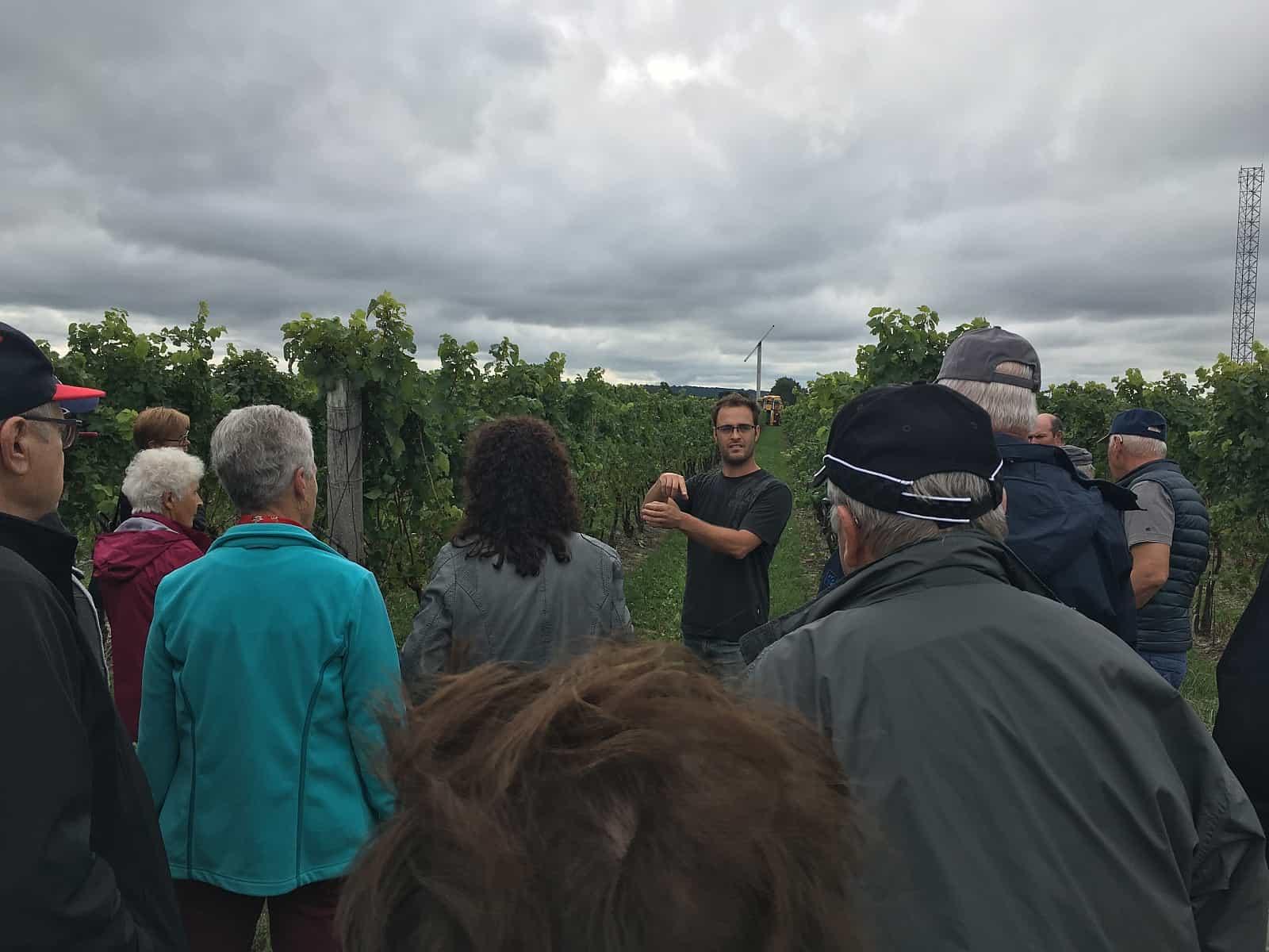 Im Vineyard erfahren Besucher Wissenswertes über den Weinbau in Kanada. Foto Between the Lines Winery, NotL