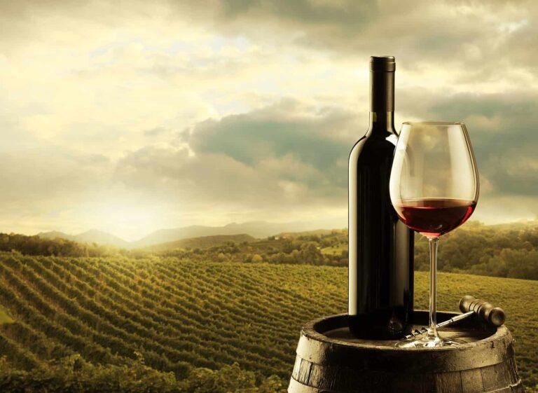 Die Weinbaukultur in Kanada bringt hervorragende Weine hervor, ausgebaut von motivierten Kellermeistern.