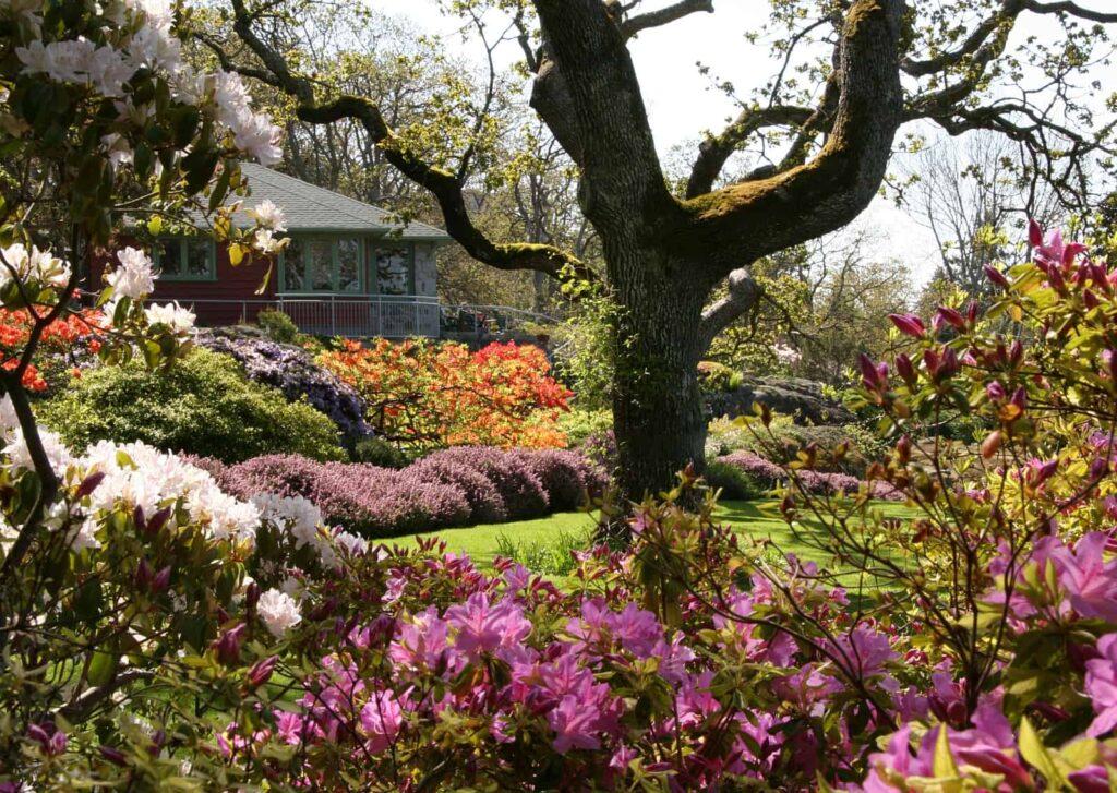 Blick auf den wunderschönen Abkhazi Garden. Foto Dennis Robinson/The Land Conservancy of BC