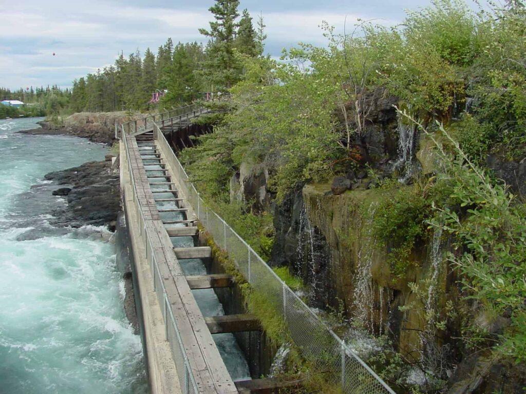Sehenswürdigkeiten Whitehorse: Die Wooden Fish Ladder, die hölzerne Aufstiegshilfe, die es den Lachsen ermöglicht, um den Staudamm des Schwatka-Lake herum zum den Laichgründen im Yukon zu gelangen. Foto Yukon Energy Corporation