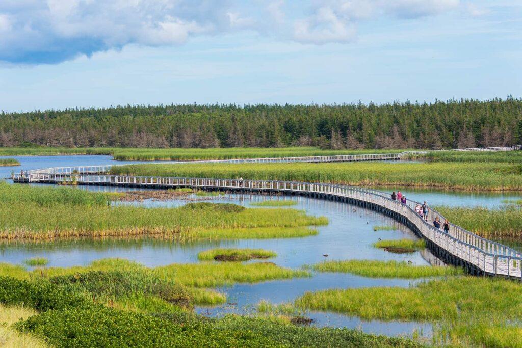 Der Greenwich Board Walk lädt zu ausgiebigen Spaziergängen im PEI National Park ein. Foto Kyle Mulinder