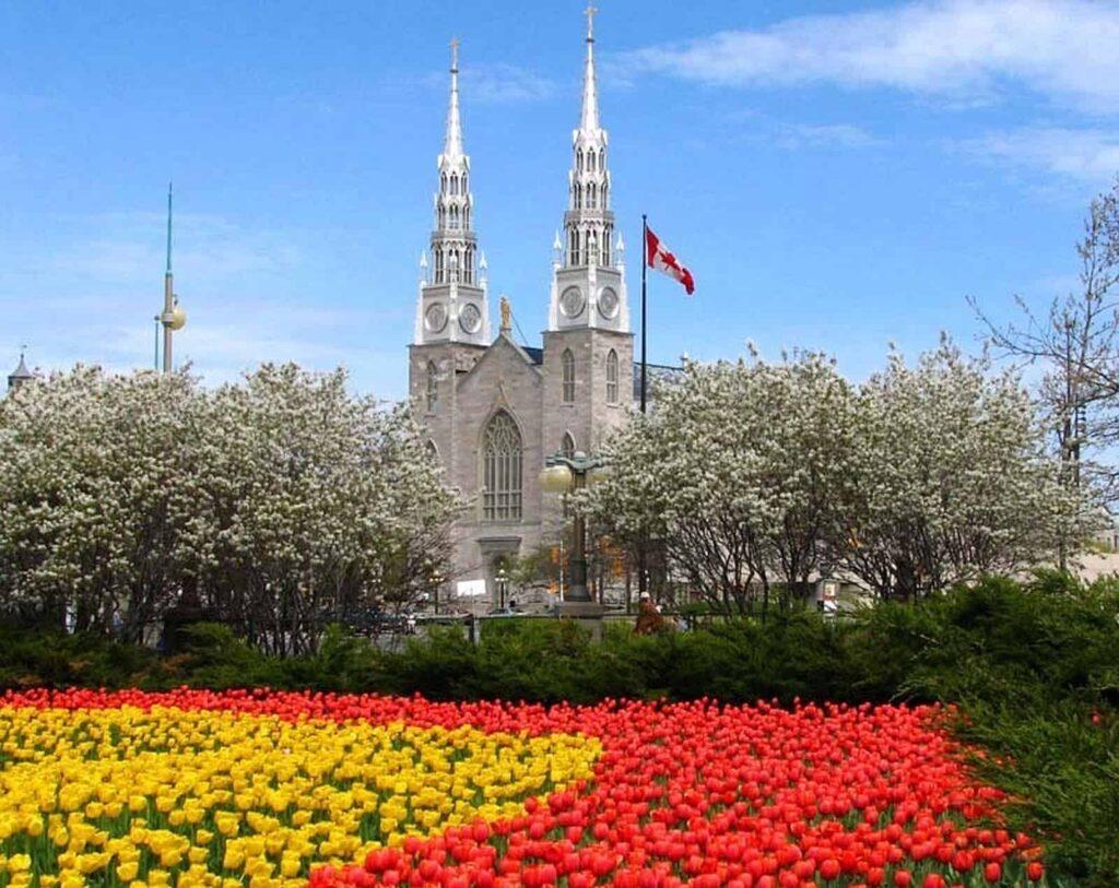 Blick auf die Kathedralbasilika Notre Dame im Herzen Ottawas. Foto Brian Kutner/Ottawa Notre Dame Cathedral Basilica