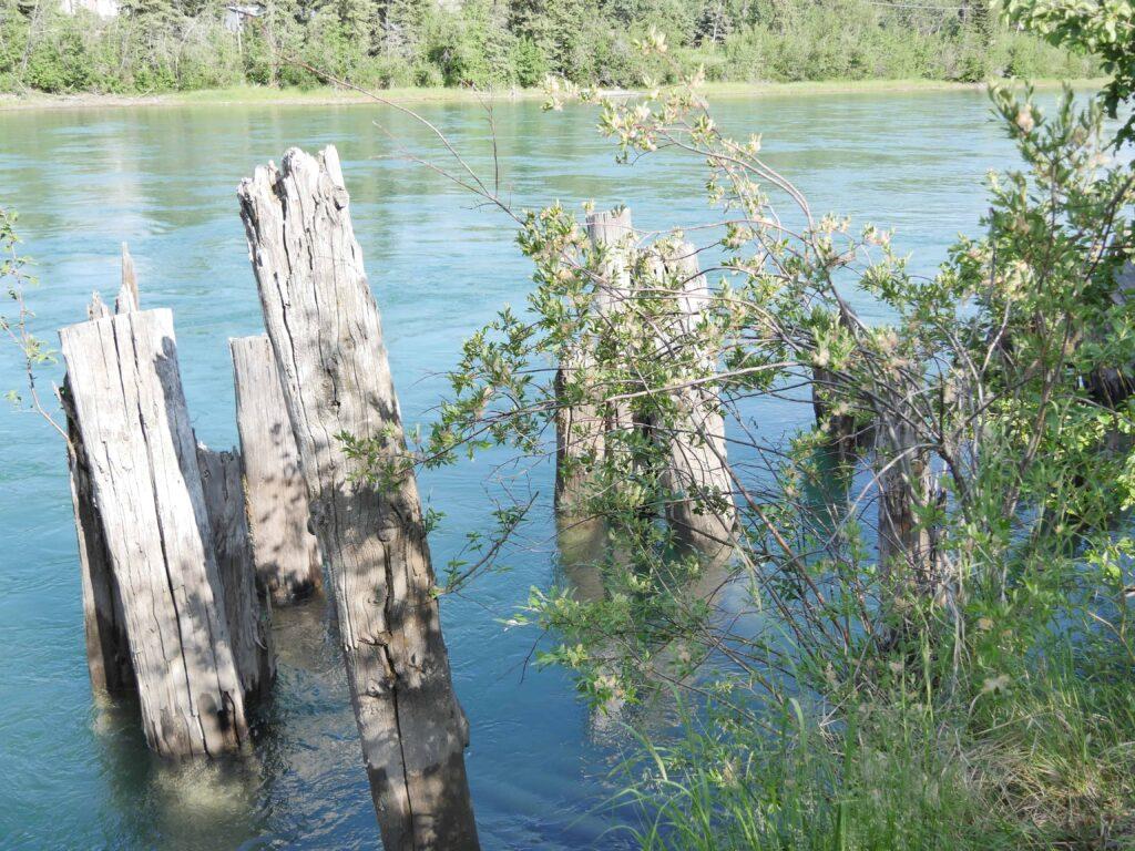 Noch heute sieht man die Geschichte in Whitehorse, wie diese Anleger im Yukon River. Foto Alfred Pradel