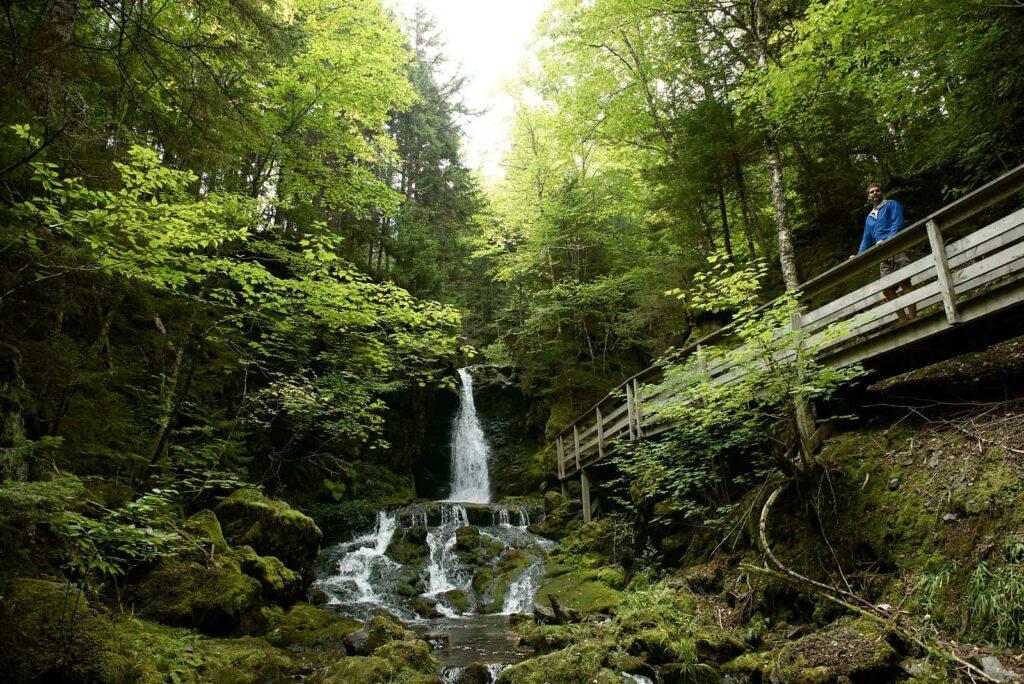 Auch auf der Landseite der Bay of Fundy gibt es viel zu entdecken. Ein Spaziergang im Fundy National Park mit seinen Küstenwäldern und seinen mehr als 20 Wasserfällen. Foto Canadian Tourism Commission