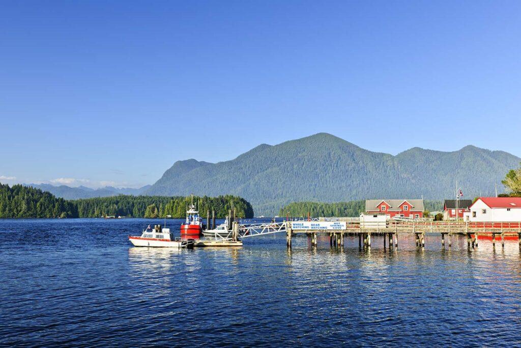 Walbeobachtungstouren auf Vancouver Island. Wir starten in Tofino. Foto elenathewise / Deposit