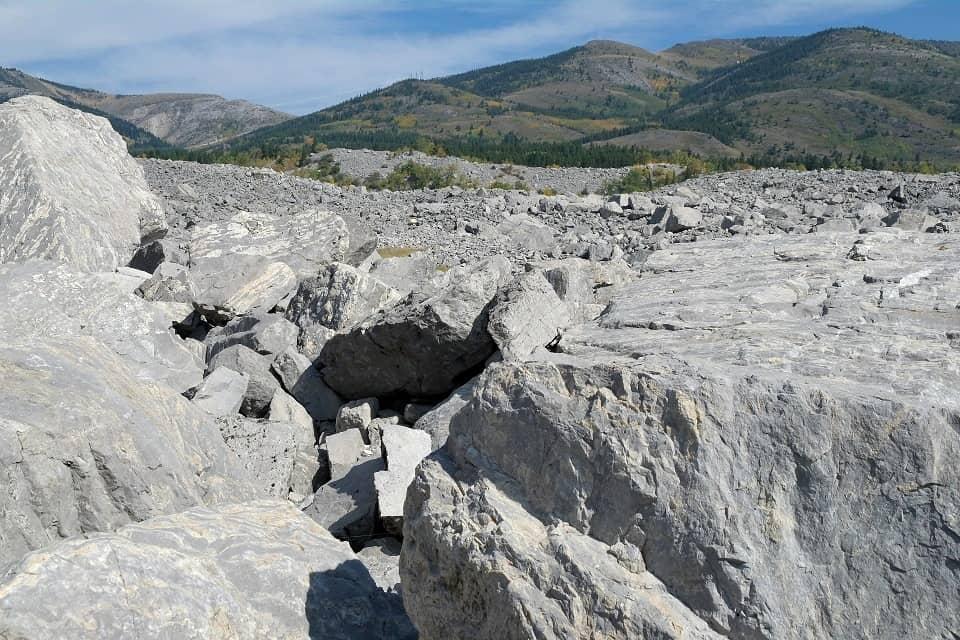 Als sei es gestern gewesen, das Fels- und Geröllfeld des Felssturzes am Turtle Mountain. Foto ©Bernadette Calonego