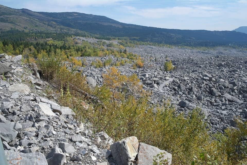 Auch mehr als 115 Jahre nach dem Felssturz hat sich in dem Trümmerfeld nur zögerlich neue Vegetation angesiedelt. Foto ©Bernadette Calonego