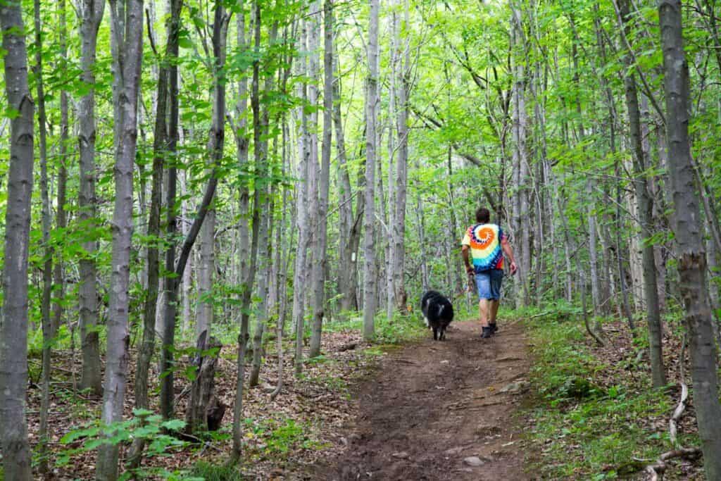Wandern auf dem Bruce Trail in Ontario. Foto amyinlondon / Deposit