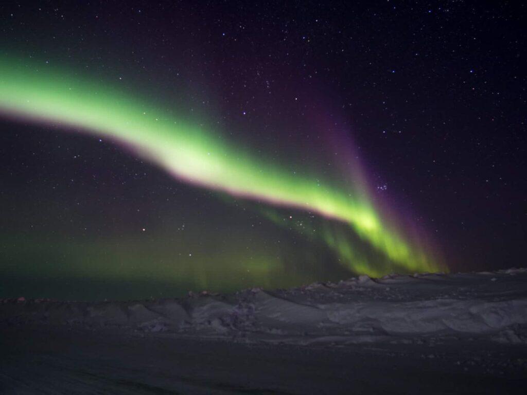 Nordlichter über der Iceroad bei Tuktoyaktuk. Foto Tobias Barth