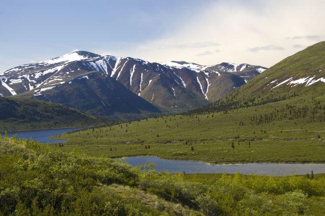Der Fish Lake Trail ist ein beliebter Weg der Einwohner von Whitehorse. Ein Blick auf dem Bonneville Lake.