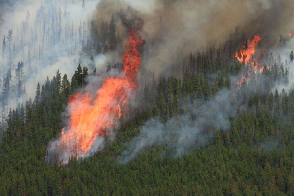 Aufgrund der extremen Hitze, die Gewitter und Blitzschlag auslösen kann, befürchten die Behörden viele Wildfire in British Columbia. Foto PantherMediaSeller / Deposit