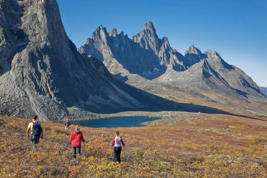 Im Herbst ist das Wandern im Tombstone Territorial Park ein besonderes Erlebnis, denn die Färbung der Pflanzen ist einfach ein Wunder der Natur. Foto Yukon Government