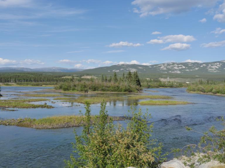 Der junge Yukon River bei Whitehorse, nachdem er den Schwatka Lake verlassen hat. Foto apr
