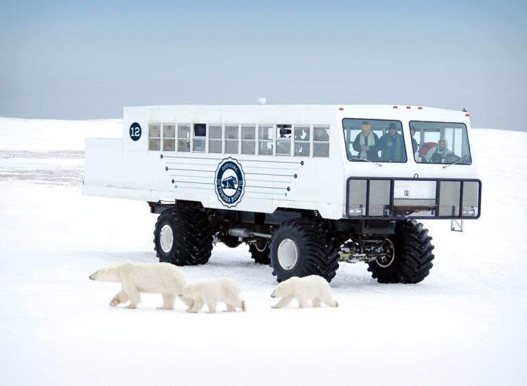 Tundra Buggy von Frontiers North Adventures. Foto Frontiers North Adventures